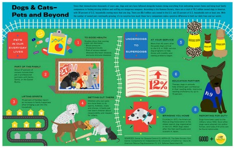 Dogs and Cats: Pets and Beyond infographic